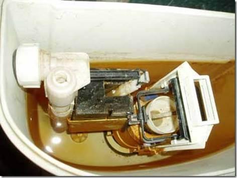 Как почистить бачок унитаза внутри